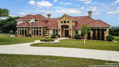 Blanco Single Family Home For Sale: 1096 Cielo Springs Dr