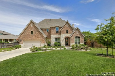 Boerne Single Family Home For Sale: 28718 Hidden Gate