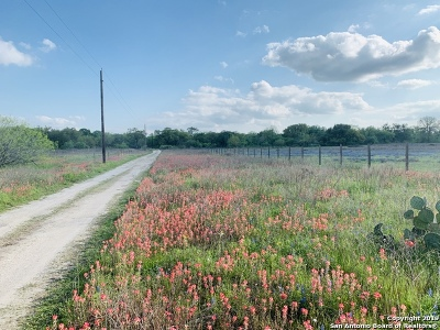 Atascosa County Residential Lots & Land For Sale: 554 Newman Rd