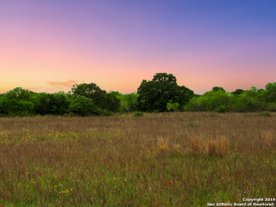 Atascosa County Residential Lots & Land For Sale: 420 Clear Lake Loop