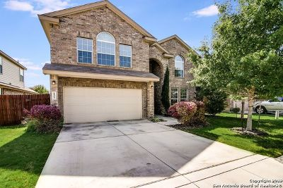 Cibolo Single Family Home For Sale: 133 Park Heights