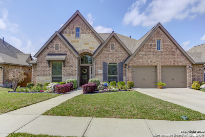 New Braunfels Single Family Home For Sale: 601 Oak Brook Dr