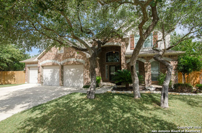 Stone Oak Single Family Home For Sale: 219 Legend Dale