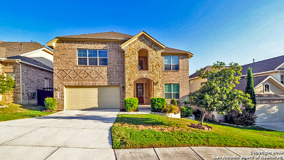 Stone Oak Single Family Home For Sale: 706 Aucuba Falls