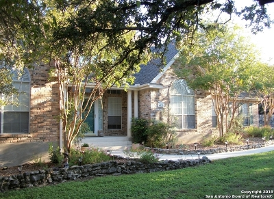 Bulverde Single Family Home For Sale: 4525 Blue Skies Dr