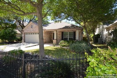 Schertz Single Family Home Active Option: 527 Jonas Dr