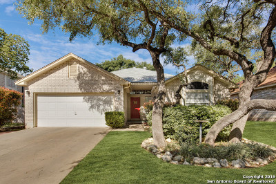 Bexar County Single Family Home Active Option: 1207 Crumpet