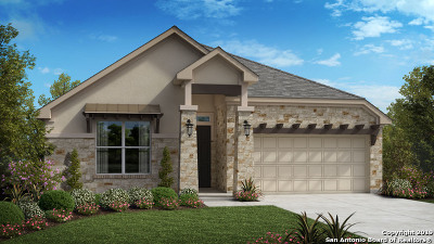 New Braunfels Single Family Home For Sale: 1133 Nutmeg Trail