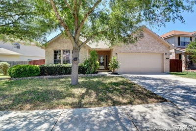 Converse Single Family Home Active Option: 9003 Anderson Bluff