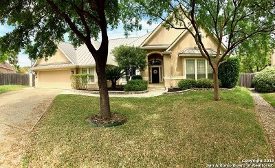 San Antonio Single Family Home New: 13422 Star Heights Dr