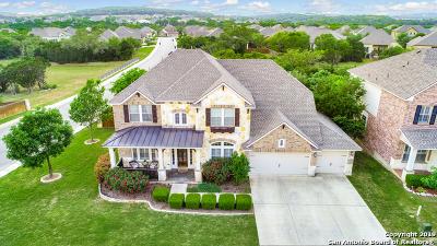 San Antonio Single Family Home For Sale: 18603 Canoe Brook