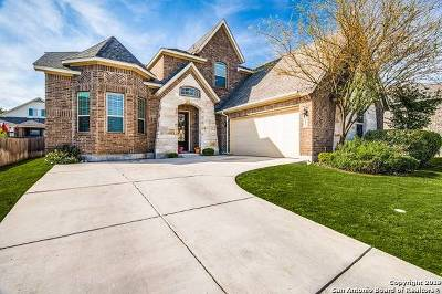 Boerne Single Family Home New: 212 Krieg Dr