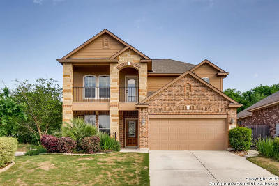 Cibolo Single Family Home Active Option: 200 Flint Rd