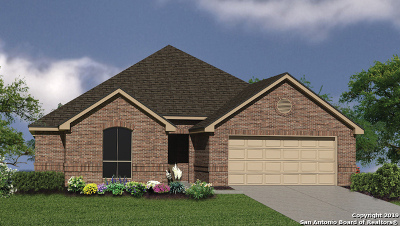 Bexar County Single Family Home New: 12803 Canadian River