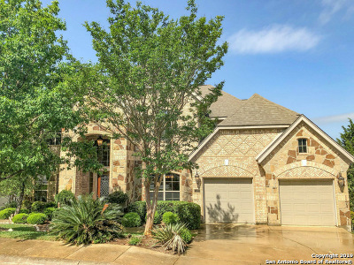 San Antonio Single Family Home New: 1430 Sun Mtn
