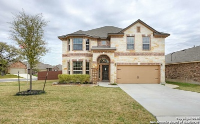 Alamo Ranch Single Family Home For Sale: 5734 Tianna Lace