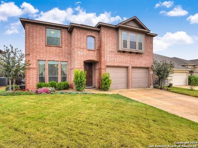 Helotes Single Family Home New: 11507 Sneffels Mt