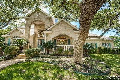San Antonio Single Family Home New: 17131 Eagle Hollow Dr