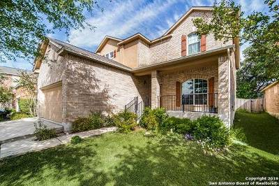Boerne Single Family Home New: 113 Kassel Dr