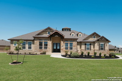 Helotes Single Family Home New: 12615 Sotol Overlook Circle