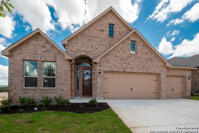 Single Family Home New: 28914 Throssel Lane