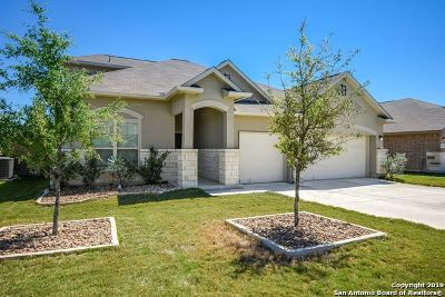 New Braunfels Single Family Home New: 479 Briar Ln