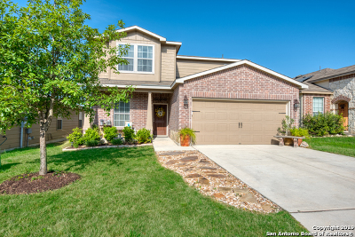 Boerne Single Family Home New: 27329 Paraiso Manor