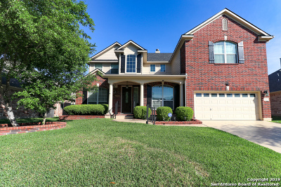Schertz Single Family Home New: 381 Frank Baum Dr