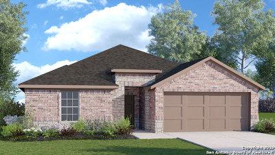 New Braunfels Single Family Home New: 541 Summersweet