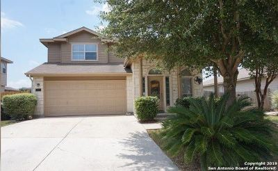 New Braunfels Single Family Home New: 357 Tanager Dr
