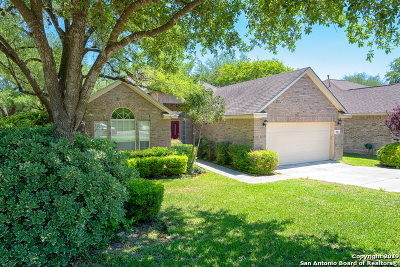 San Antonio TX Single Family Home Back on Market: $314,750