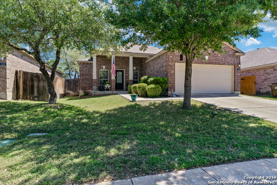 Bexar County Single Family Home Active Option: 418 Point Valley