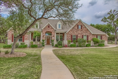 New Braunfels Single Family Home For Sale: 26103 Park Bend Dr