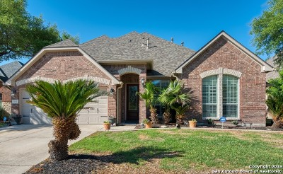 Helotes Single Family Home New: 15715 Ponderosa Pass