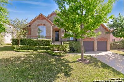 San Antonio Single Family Home New: 234 Sable Falls
