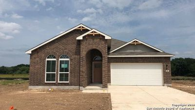 New Braunfels Single Family Home New: 358 Orion