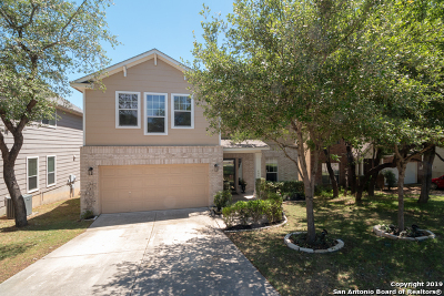 San Antonio Single Family Home New: 454 Cattle Ranch Dr