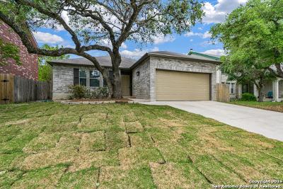 San Antonio Single Family Home New: 9575 Wicklow Dr