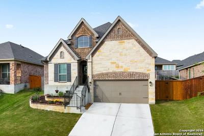 Bexar County Single Family Home New: 2027 Tillman Park