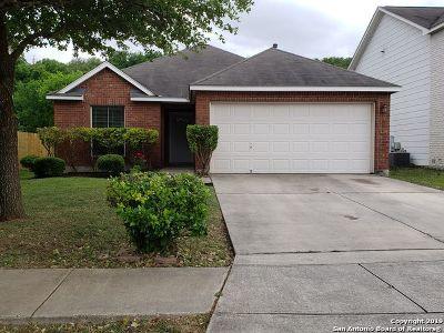 San Antonio Single Family Home New: 4023 Arbor Heights