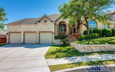 San Antonio Single Family Home New: 26027 Lookout Oaks