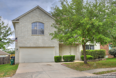 San Antonio TX Single Family Home New: $204,900