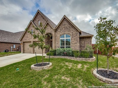 Seguin Single Family Home New: 2943 Coral Sky