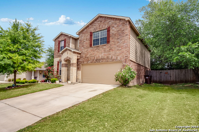 Bexar County Single Family Home New: 302 Prato Brezza