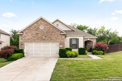 San Antonio Single Family Home New: 1203 Sun Is