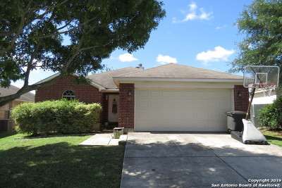 San Antonio Single Family Home New: 6034 Mountain Meadows