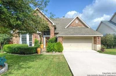 San Antonio Single Family Home New: 746 Mesa Ridge