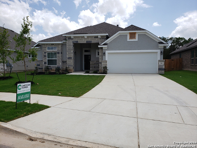 New Braunfels Single Family Home New: 590 Mission Hill Run