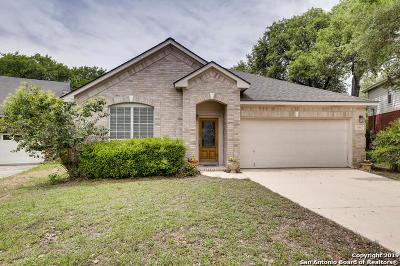 San Antonio Single Family Home New: 14547 Triple Crown Ln