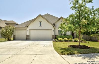 Boerne Single Family Home New: 201 Krieg Dr